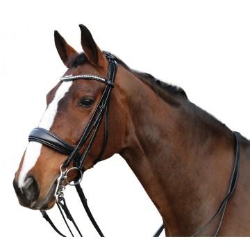 Horse Guard Classic Ergo kankisuitset