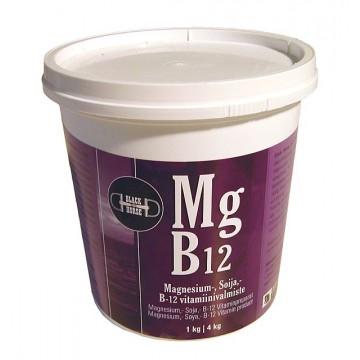 Black Horse Mg B12