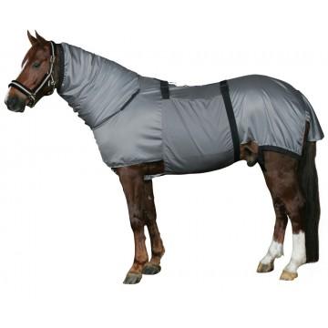Horse Guard ekseemaloimi (ihottuma)