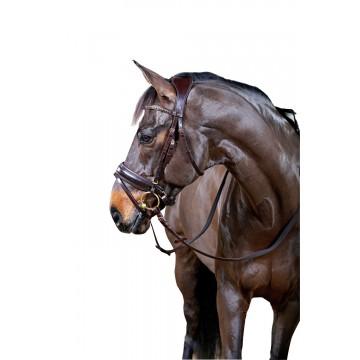HorseGuard Classic Ergo anatomiset suitset