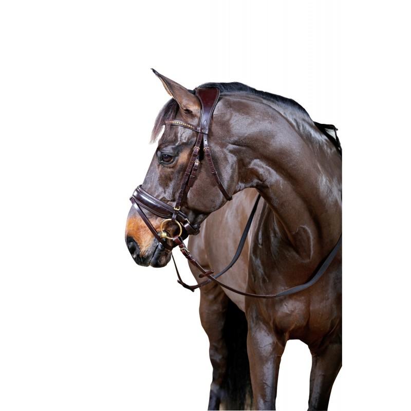 Horse Guard Classic Ergo anatomiset suitset