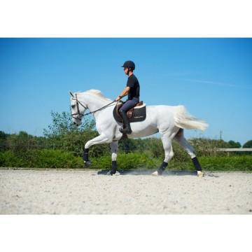 Back on Track treeni eli ratsastussuojat etujalkoihin